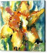 Forest Daffodil In Rain Acrylic Print