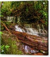 Forest Falls Acrylic Print