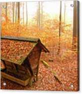 Forest In Autumn With Feed Rack Acrylic Print by Matthias Hauser