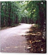 Forest In The Road Wc 2 Acrylic Print