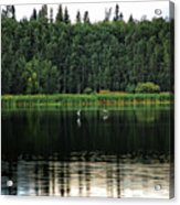 Forest Lake  Acrylic Print