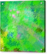 Forest Morning Colors Acrylic Print