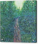Forest Of Green And Blue Acrylic Print