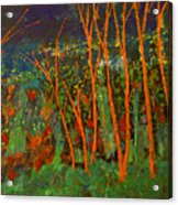 Forest Of Morpheus Acrylic Print