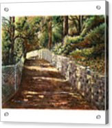 Forest Path White Cliff Acrylic Print