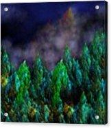 Forest Primeval Acrylic Print by David Lane