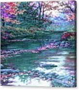 Forest River Scene. L A Acrylic Print