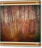 Forest Scene. L A With Decorative Ornate Printed Frame. Acrylic Print