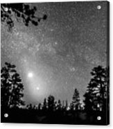 Forest Silhouettes Constellation Astronomy Gazing Acrylic Print