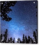 Forest Star Gazing An Astronomy Delight Acrylic Print