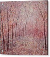 Forest Stillness. Acrylic Print