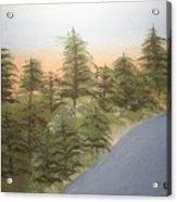 Forest Sunrise Beach Acrylic Print