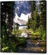 Forest View To Mountain Lake Acrylic Print