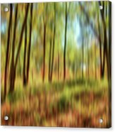 Forest Vision Acrylic Print