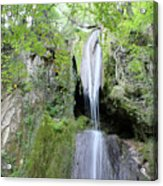 Forest With Waterfall Acrylic Print
