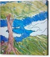 Forestree Acrylic Print