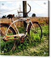 Forgotten Bicycle Acrylic Print