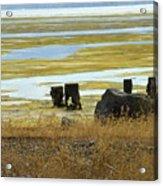 Forgotten Pier Acrylic Print