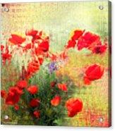 Formas Y Flores Acrylic Print