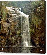 Forth Falls Tasmania Acrylic Print