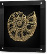 Fossil Record - Golden Ammonite Fossil On Square Black Canvas #4 Acrylic Print