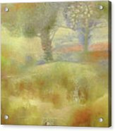 Fouette Acrylic Print