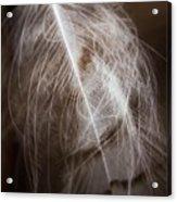 Found Feather Acrylic Print