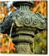 Fountain At Union Park Acrylic Print