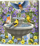 Fountain Festivities - Birds And Birdbath Painting Acrylic Print