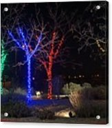 Four Lighted Trees Acrylic Print