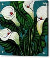 Four Long Lilies Acrylic Print