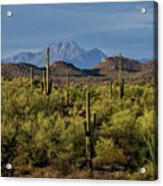 Four Peaks On The Horizon  Acrylic Print