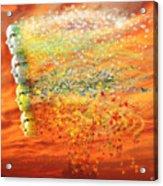 Four Seasons Winds Acrylic Print