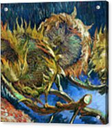 Four Sunflowers Gone To Seed, By Vincent Van Gogh, 1887, Kroller Acrylic Print