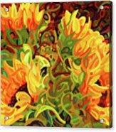 Four Sunflowers Acrylic Print