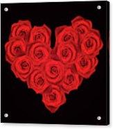 Fourteen Roses Acrylic Print by Wim Lanclus