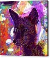 Fox Animal Tuscany  Acrylic Print