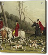 Fox Hunting Going Into Cover Acrylic Print