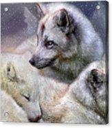 Fox Moods Acrylic Print