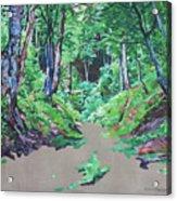 Foxy Canyon Spring Acrylic Print