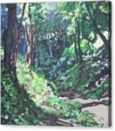Foxy Canyon Summer Acrylic Print