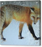 Foxy Lady  Acrylic Print