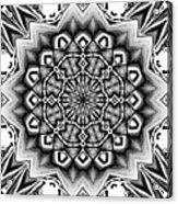Fractal 12 Acrylic Print