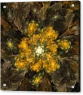 Fractal Floral 02-12-10 Acrylic Print