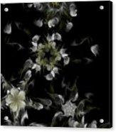 Fractal Floral Pattern Black Acrylic Print
