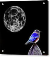 Fractal Moon And Bluebird Acrylic Print