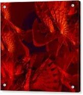 Fractal Parapluie Acrylic Print