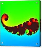 Fractal Trilobite Animal Acrylic Print