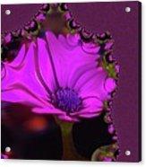 Fractual Flower  Acrylic Print