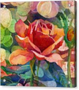 Fragrant Roses Acrylic Print